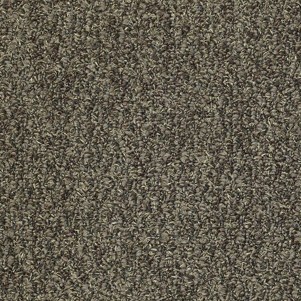 Trafficmaster Commercial Carpet Sample Isla Vista In
