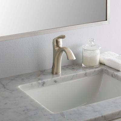 Eva Single Hole Single-Handle High-Arc Bathroom Faucet in Brushed Nickel