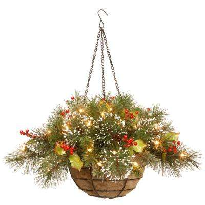 20 in. Wintry Pine Hanging Basket with Battery Operated Warm White LED Lights
