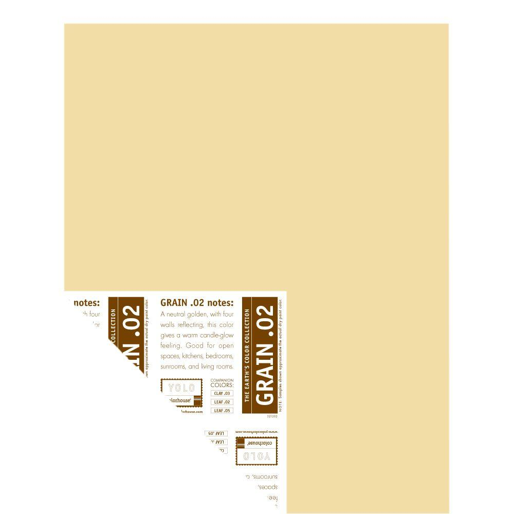 YOLO Colorhouse 12 in. x 16 in. Grain .02 Pre-Painted Big Chip Sample