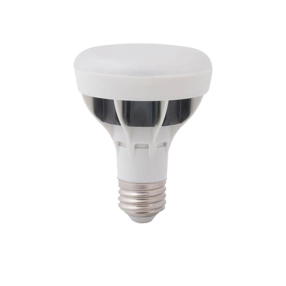 EcoSmart 50W Equivalent Daylight (5000K) BR20 LED Flood Light Bulb