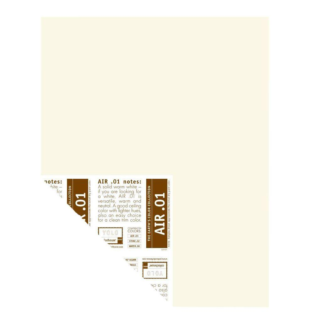 YOLO Colorhouse 12 in. x 16 in. Air .01 Pre-Painted Big Chip Sample