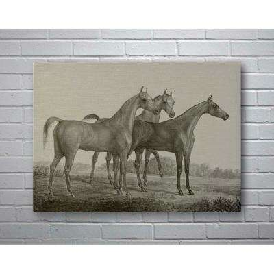40 in. x 29 in. Three Horses Small Splash Works Frameless Canvas Wall Art