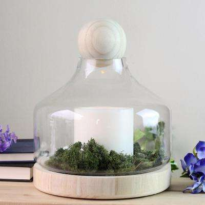11.75 in. Glass Hurricane Candle Holder