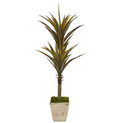63 in. Yucca Artificial Tree in Country White Planter