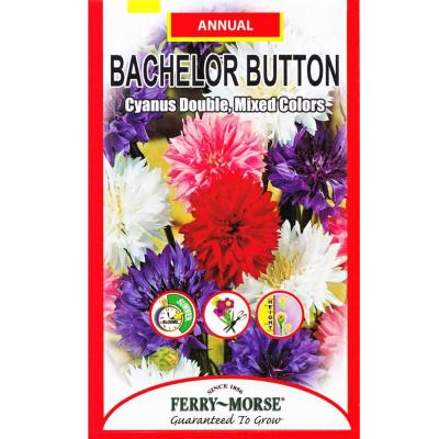 Bachelor Button Double Mixed Colors Seed