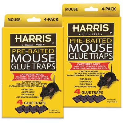 Real-Kill Large Glue Traps 2 ct Non-Toxic, Ready-to-Use Rat
