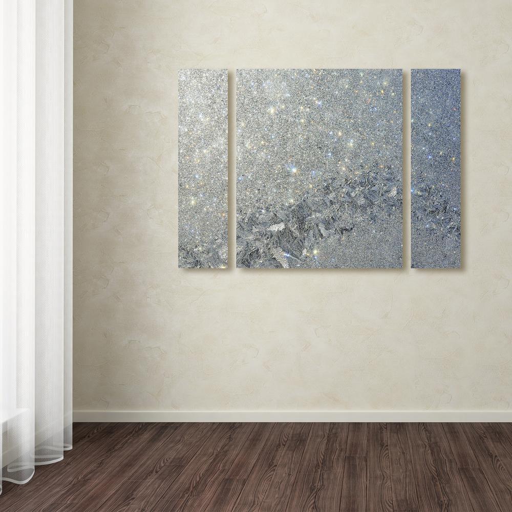 "30 in. x 41 in. ""Frost Pattern Sun Stars"" by Kurt Shaffer Printed Canvas Wall Art"