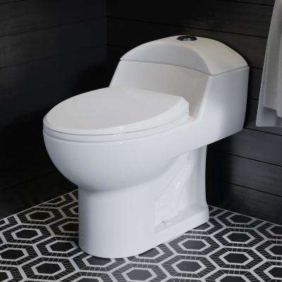 Chateau 1-Piece 0.8/1.28 GPF Dual Flush Elongated Toilet in White