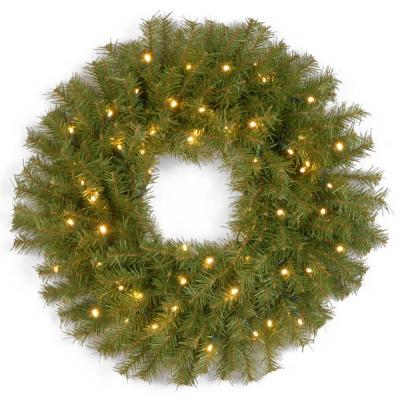 24 in. Norwood Fir Artificial Wreath with Battery Operated Warm White LED Lights