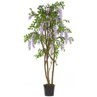 5 ft. Wisteria Silk Tree