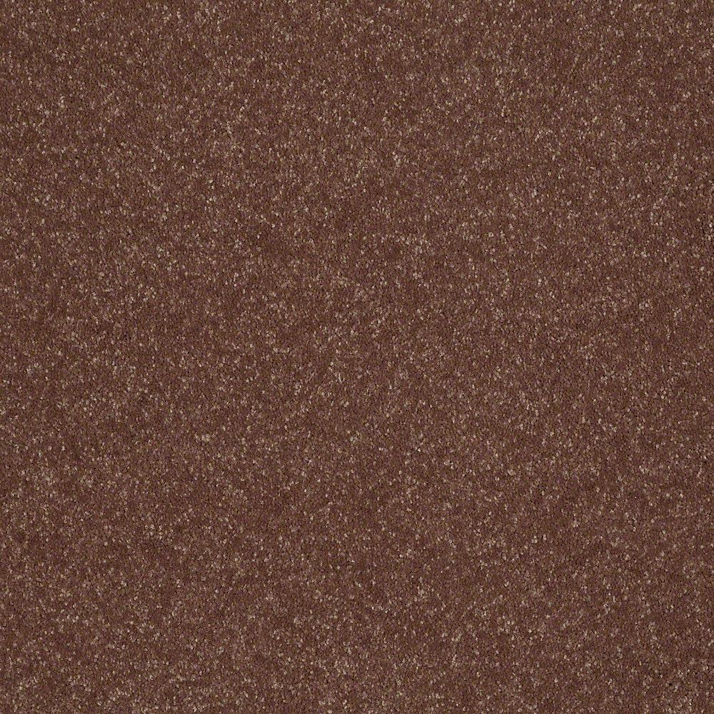 Full Bloom II - Color Park Trail Texture 15 ft. Carpet