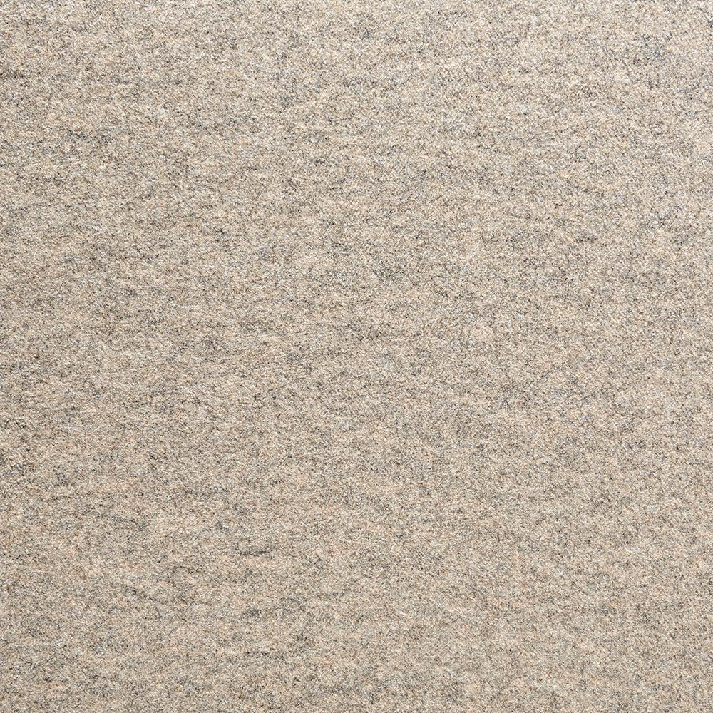 Fedora Taupe Texture 19.7 in. x 19.7 in. Carpet Tile (6