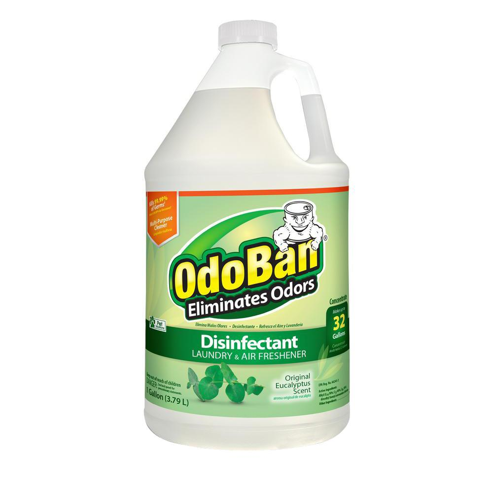 OdoBan 1 Gal. Eucalyptus Disinfectant, Laundry and Air Freshener, Mold and Mildew Control, Multi-Purpose Concentrate