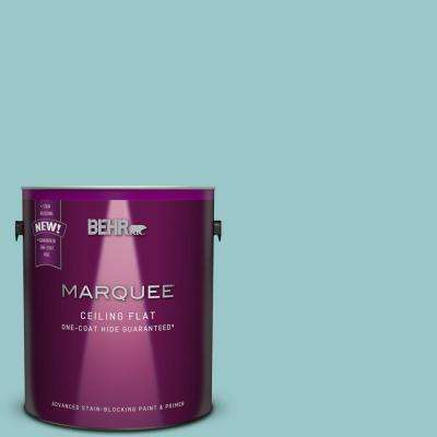 1 gal. #MQ6-08 Tinted to Aquifer One-Coat Hide Flat Interior Ceiling Paint and Primer in One