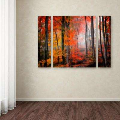 """30 in. x 41 in. """"Wildly Red"""" by Philippe Sainte-Laudy Printed Canvas Wall Art"""