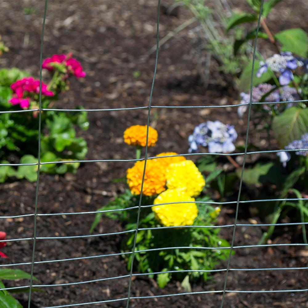 Everbilt 2 3 Ft X 50 Ft Pvc Rabbit Guard Garden Fence Welded
