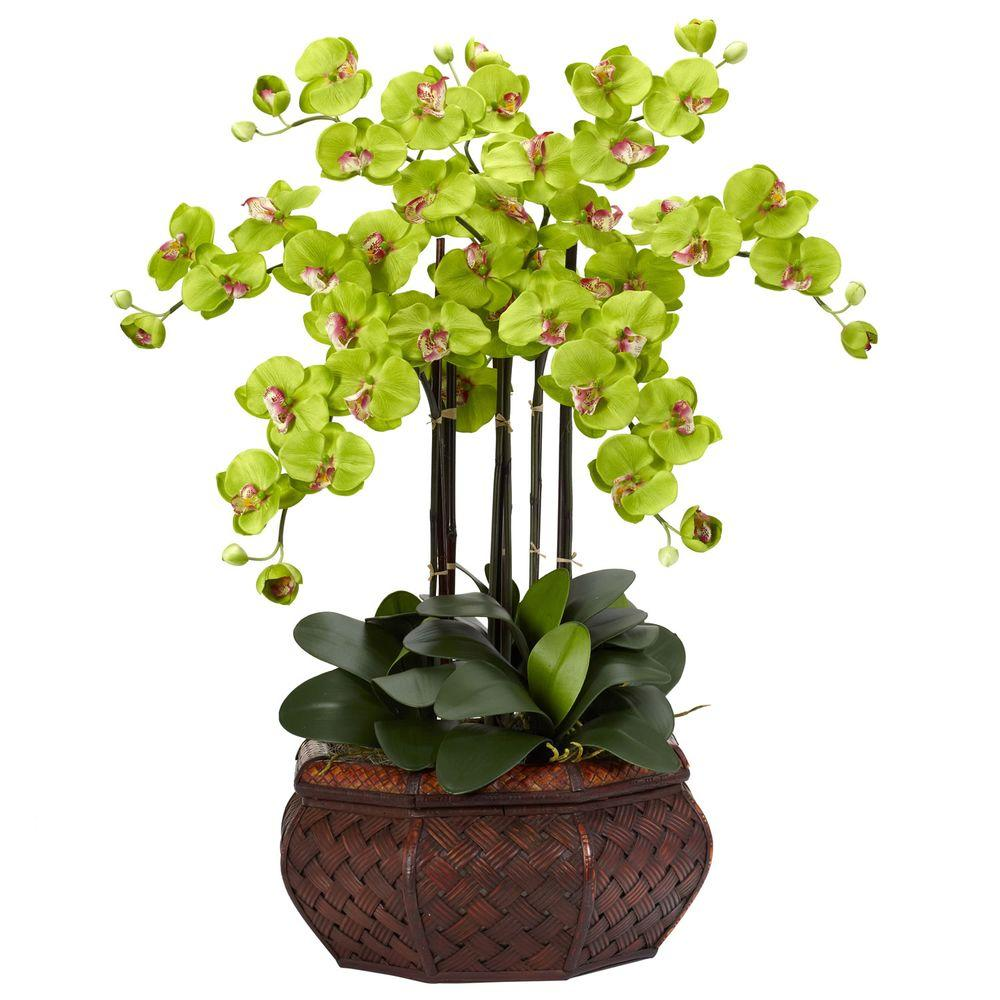NEARLY NATURAL 30 in. H Green Large Phalaenopsis Silk Flower Arrangement NEARLY NATURAL 30 in. H Green Large Phalaenopsis Silk Flower Arrangement