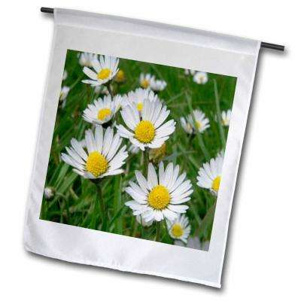 Flowers 1 ft. x 1-1/2 ft. Daisy Flag