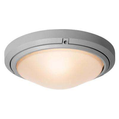 Oceanus 1-Light Satin Outdoor LED Sconce
