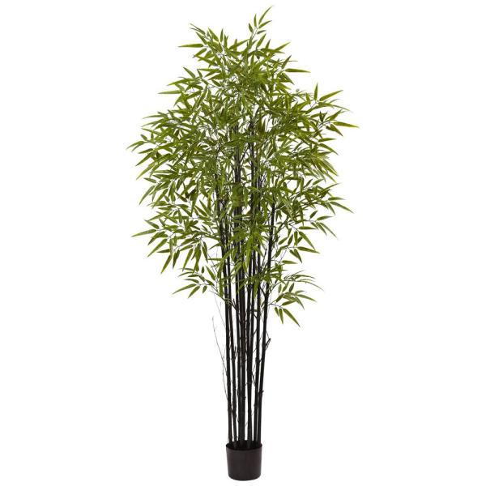 Outdoor 6 Ft Black Bamboo Tree Uv