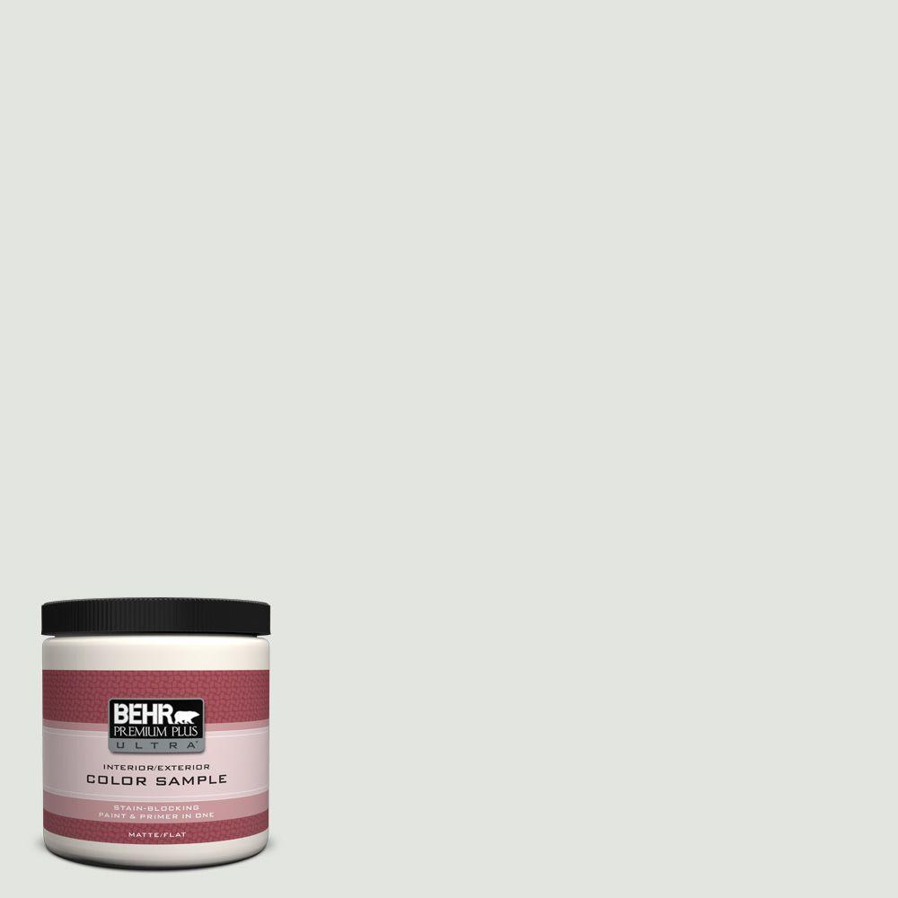 8 oz. #BL-W12 Canyon Wind Matte Interior/Exterior Paint and Primer in