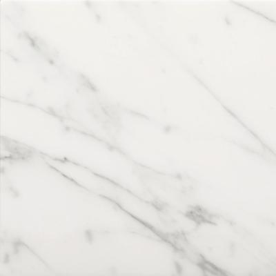 Bianco Gioia 12 in. x 12 in. Marble Floor and Wall Tile (10 sq. ft. / case)