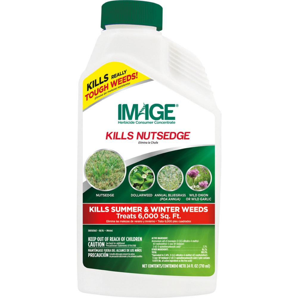IMAGE 24 oz  Nutsedge Killer