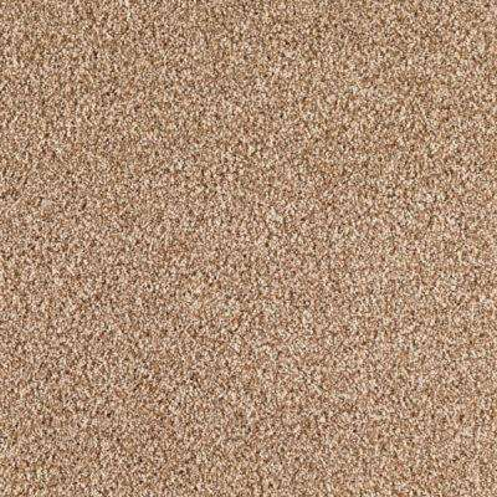 Carpet Sample - Lavish II - Color Sienna Texture 8 in. x 8 in.