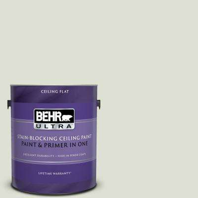 1 gal. #PPU10-12 Whitened Sage Ceiling Flat Interior Paint and Primer in One