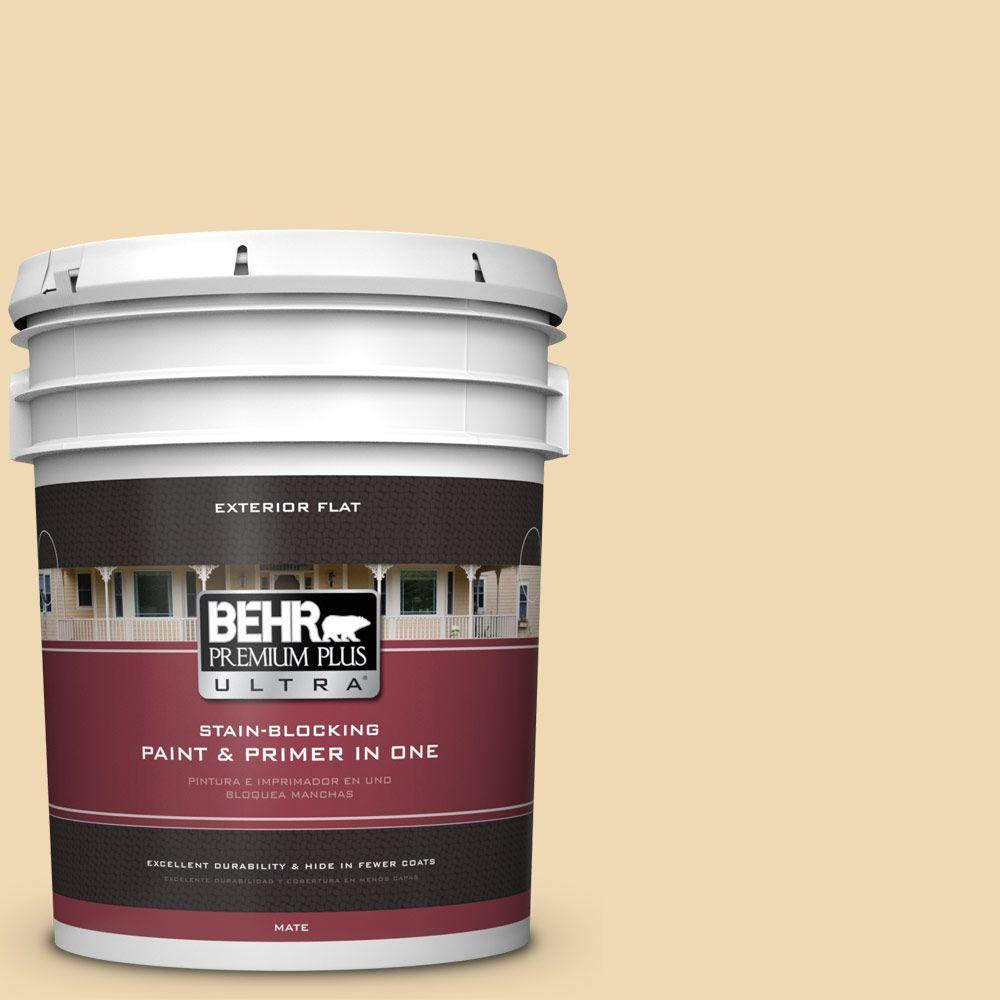 BEHR Premium Plus Ultra 5-gal. #PPU6-11 Hummus Flat Exterior Paint