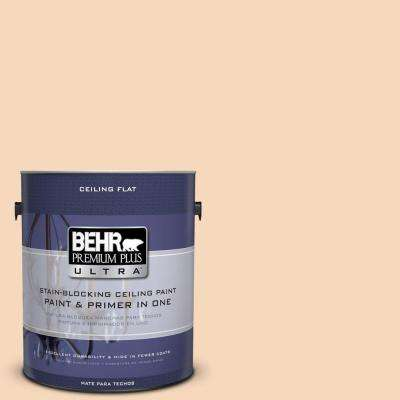 1-gal. #PPU4-11 Ceiling Tinted to Porcelain Peach Interior Paint