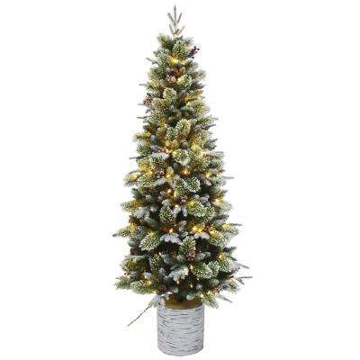 6.5 ft. Pre-Lit Incandescent Entry Potted Artificial Christmas Tree with 150 White Lights