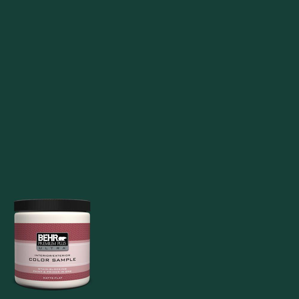 BEHR Premium Plus Ultra 8 oz. #ECC-51-3 Hidden Forest Interior/Exterior Paint Sample