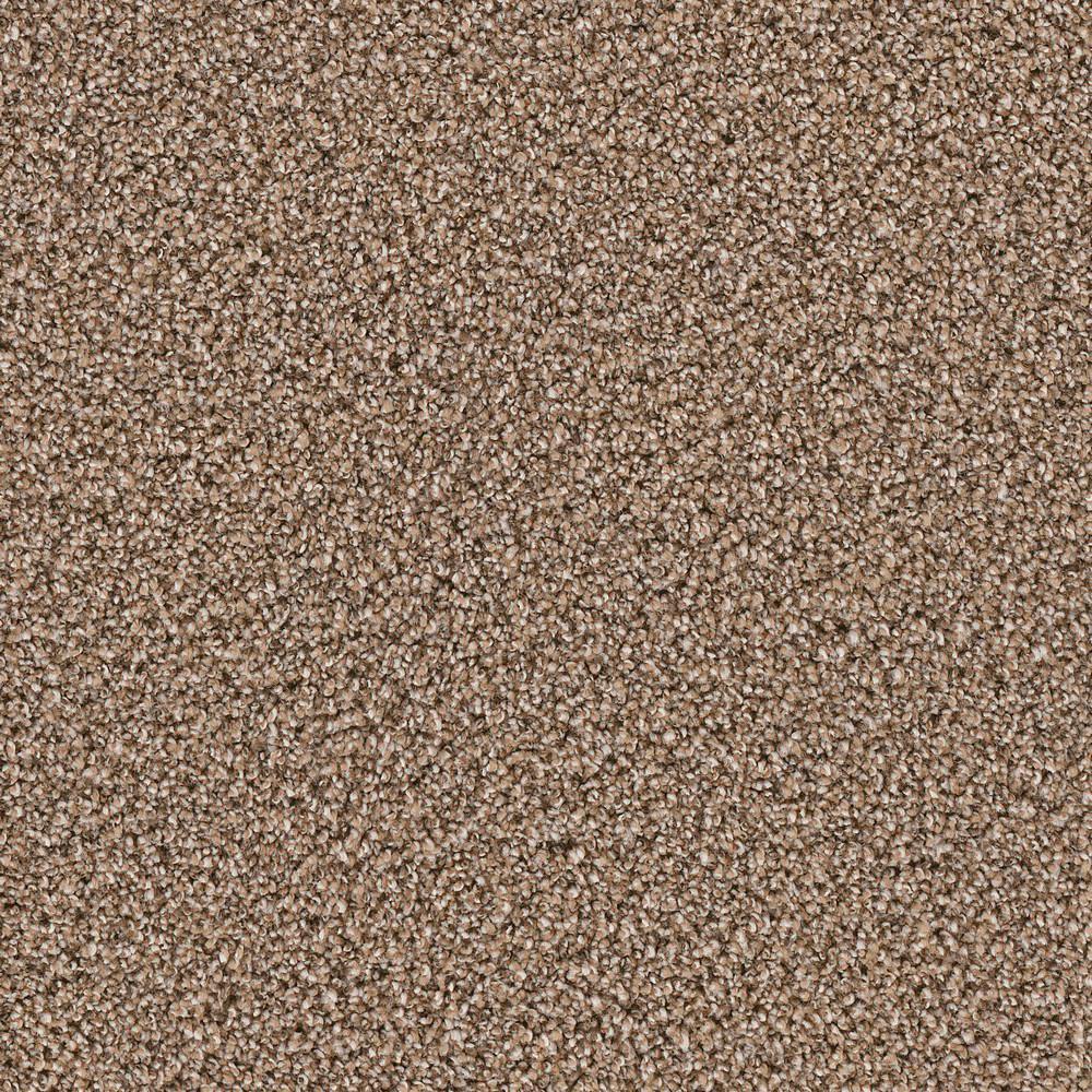 Carpet Sample - Gateway II - Color Warren Texture 8 in. x 8 in.