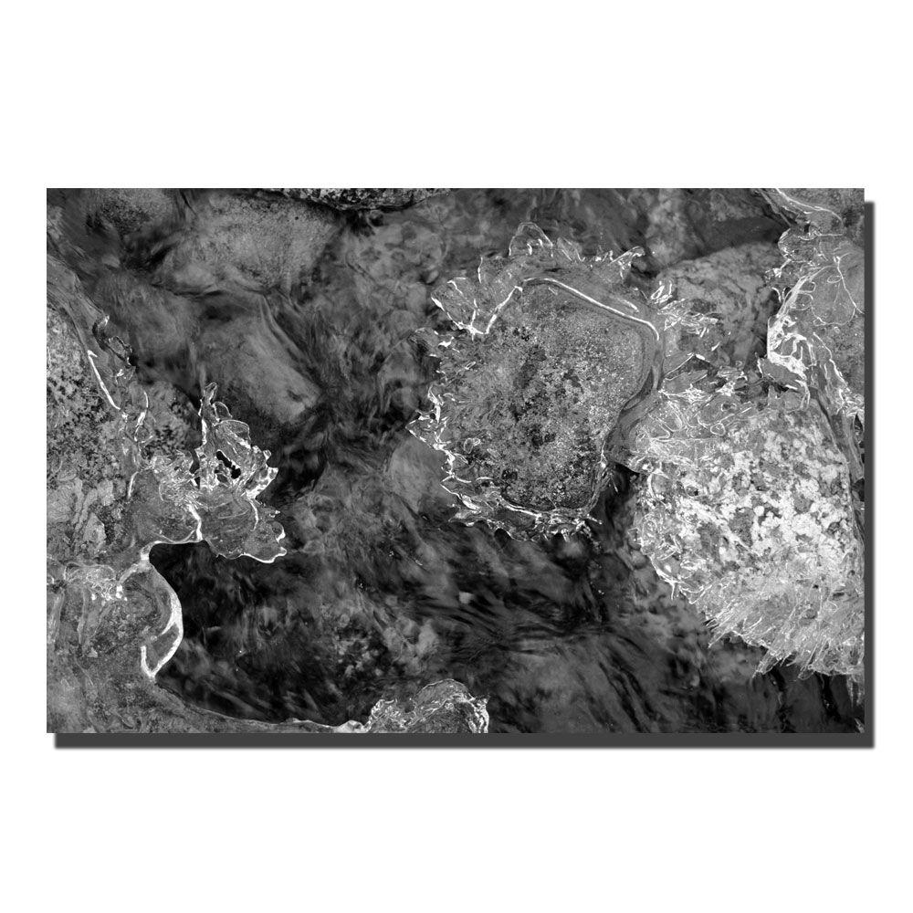 24 in. x 16 in. Water Rocks and Ice Canvas Art