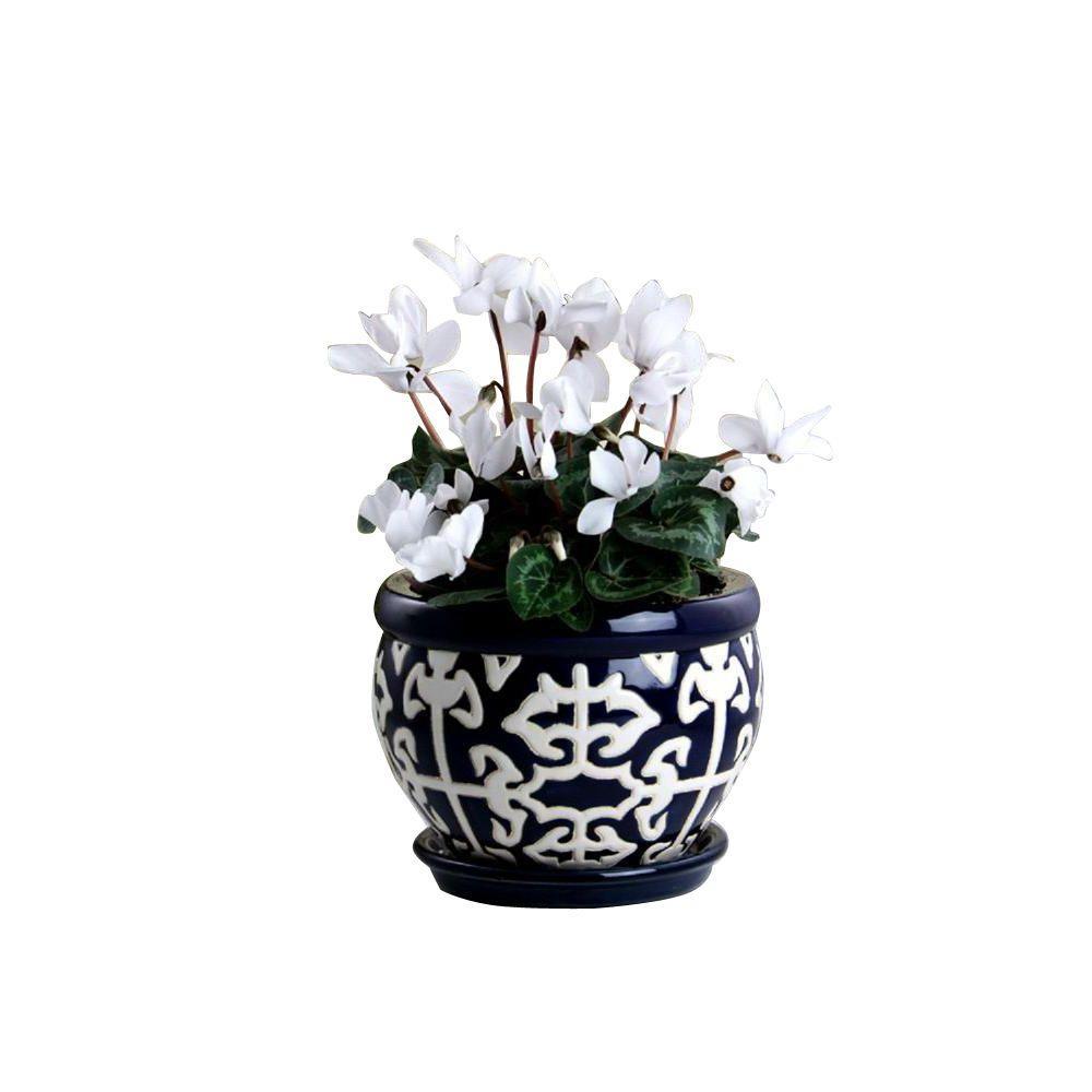 Small - Ceramic - Blue - Plant Pots - Planters - The Home Depot