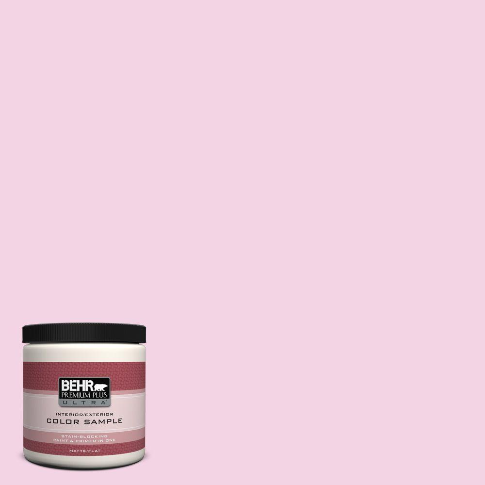 8 oz. #690A-2 Hopeful Matte Interior/Exterior Paint and Primer in One