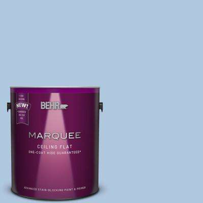 1 gal. #PPU14-13 Tinted to Caspian Tide Flat Interior Ceiling Paint and Primer in One