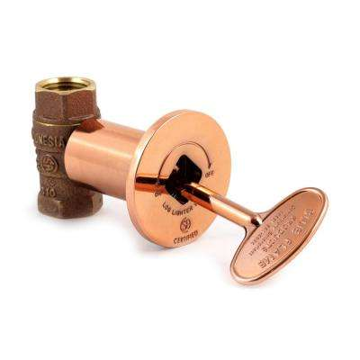 Multifunctional Valve Kit in Polished Copper