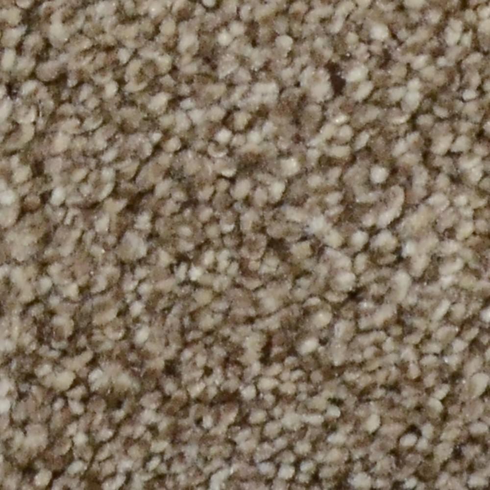Carpet Sample - Harvest III - Color Skytop Texture 8 in. x 8 in.