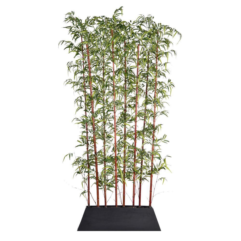96 in. Tall Burgundy Bamboo Screen in Pot - KD