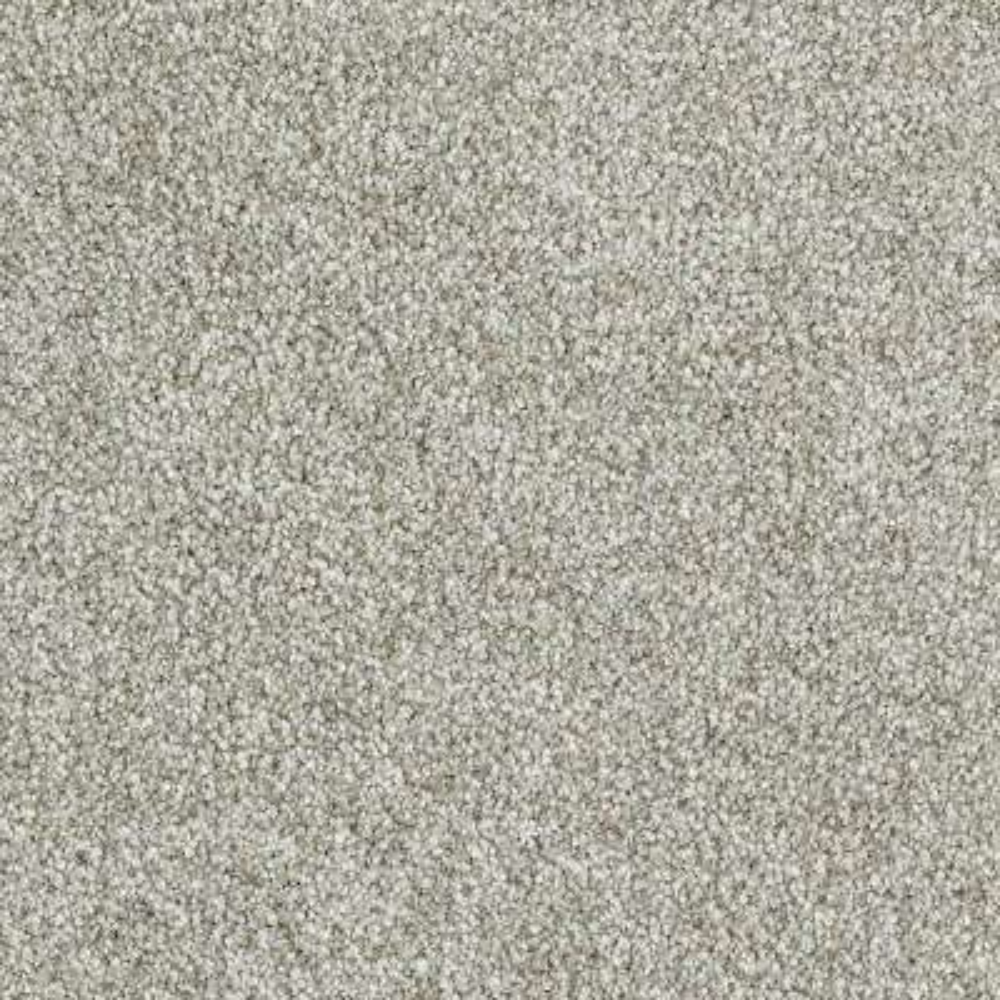Phenomenal I - Color Orion Texture 12 ft. Carpet