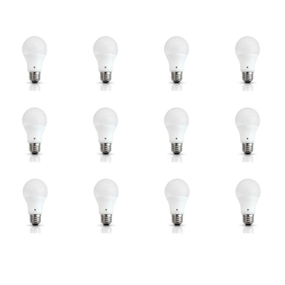 60-Watt Equivalent A19 E26 Base 800-Lumen LED Light Bulb Daylight (12-Pack)
