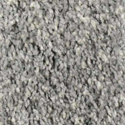Carpet Sample - Trendy Threads I - Color Camden Texture 8 in. x 8 in.