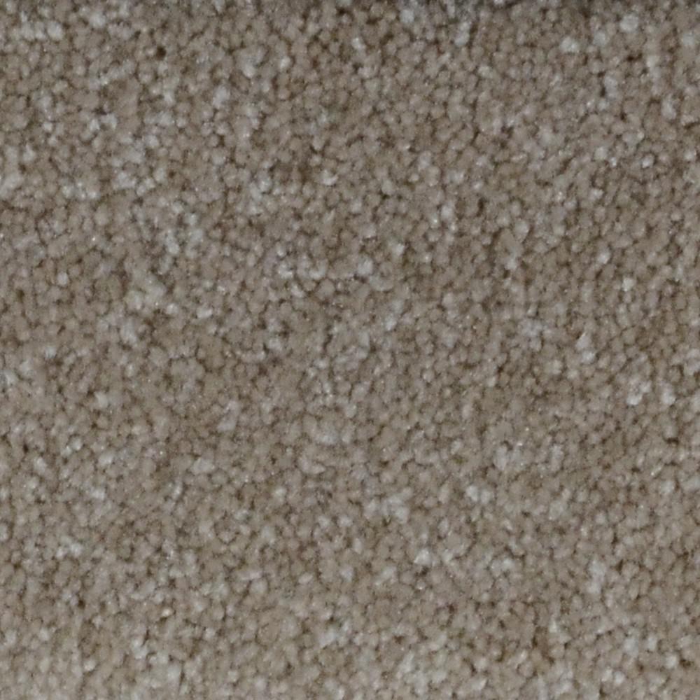 Slug Trail On Living Room Carpet: Home Decorators Collection Appalachi I (S), (F)