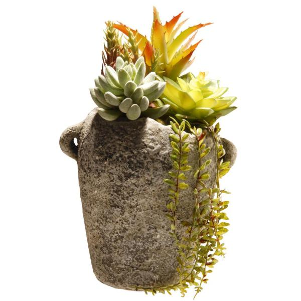 11.8 in. Succulent in Ceramic Pot
