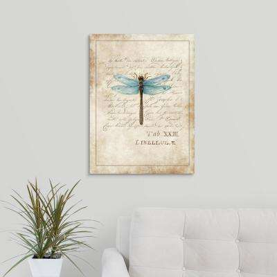 """""""Dragonfly Study"""" by Susan Winget Canvas Wall Art"""