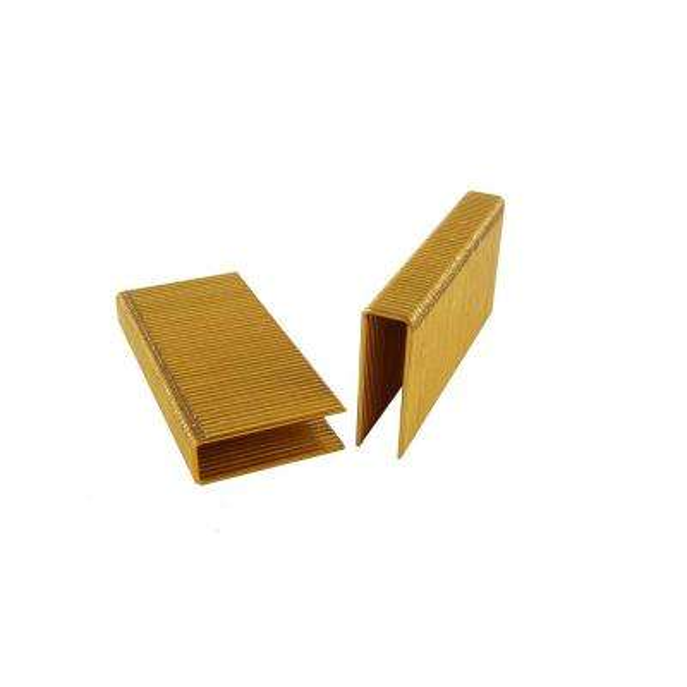 1/2 in. x 2 in. Galvanized Flooring Staples (1080-Pack)