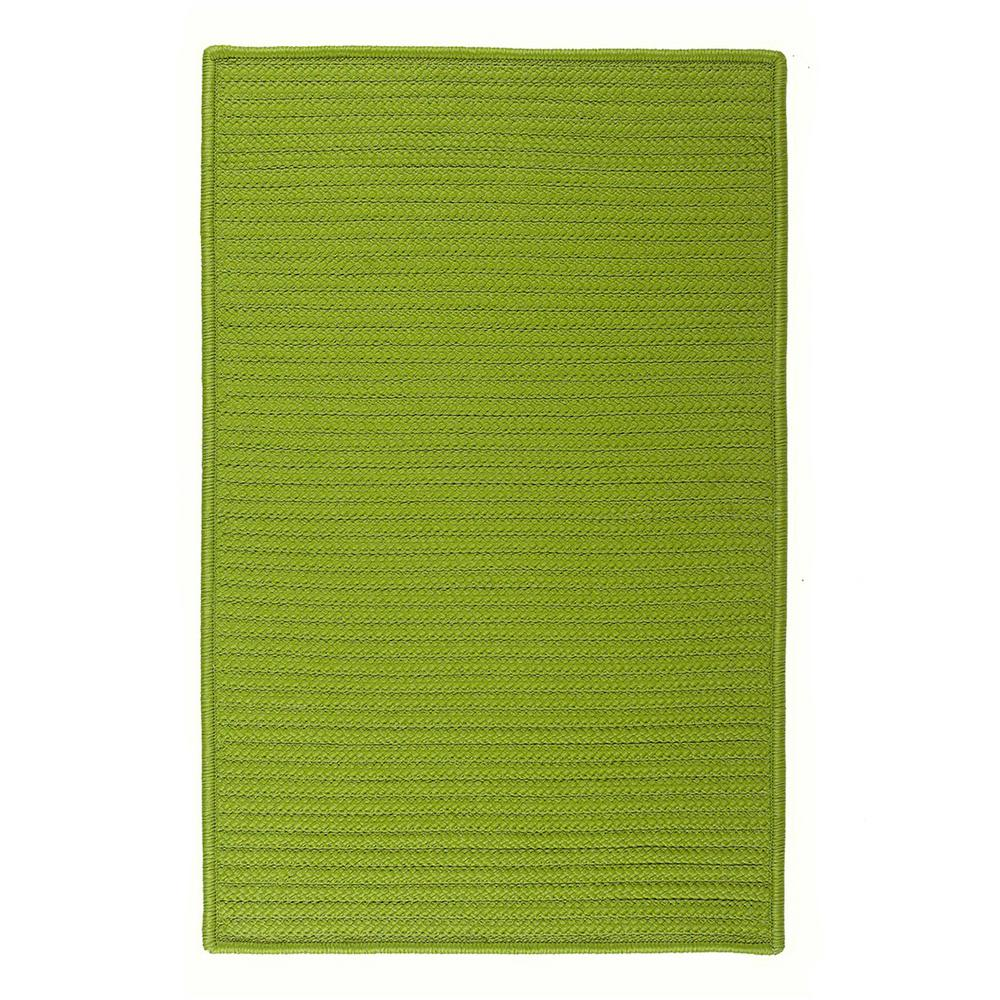 Solid Bright Green 3 ft. x 5 ft. Braided Indoor/Outdoor Area Rug
